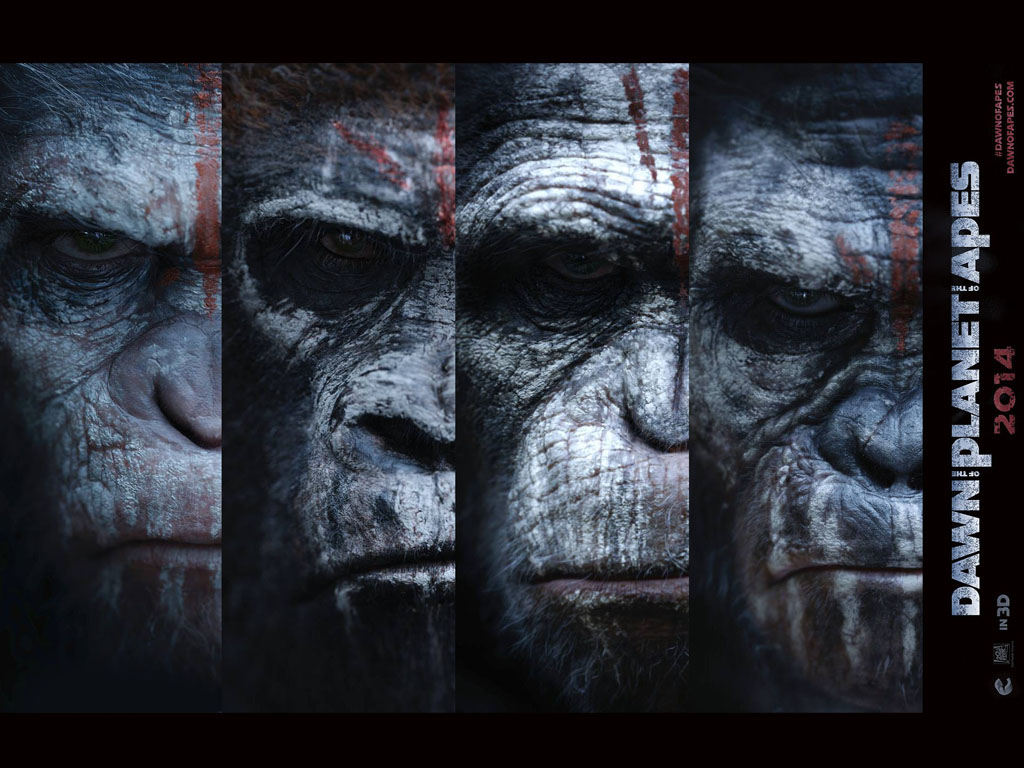 Dawn Of The Planet Of The Apes Hq Movie Wallpapers Dawn Of The