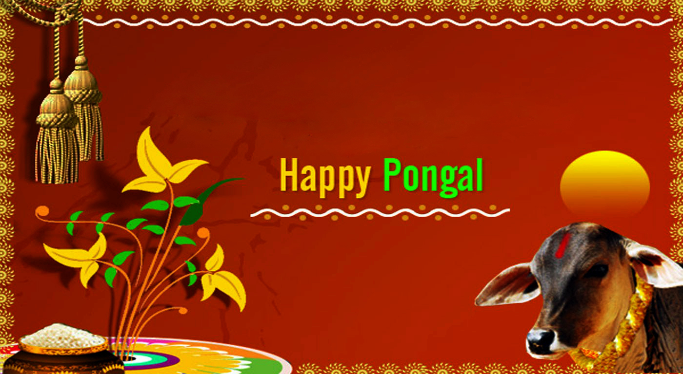 pongal wallpapers | download pongal wallpaper hd for mobile & desktop