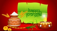 Pongal Wallpapers 2016